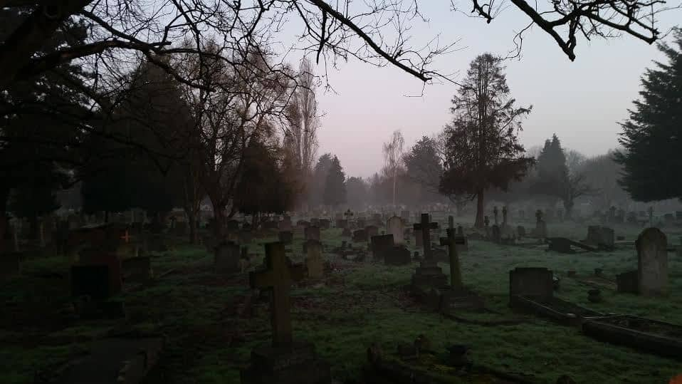 Living Next to a Cemetery South Ealing Fox Emerson