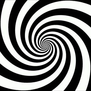 The Spiral Fox Emerson